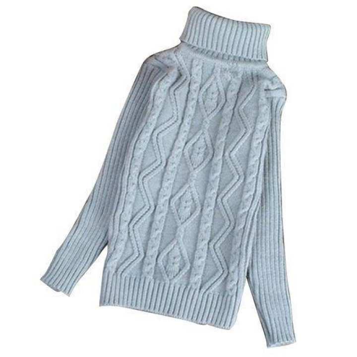 Warm Knit Turtleneck Sweater