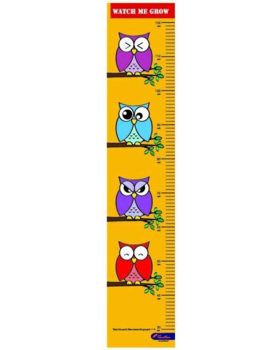 Height Chart - Owls