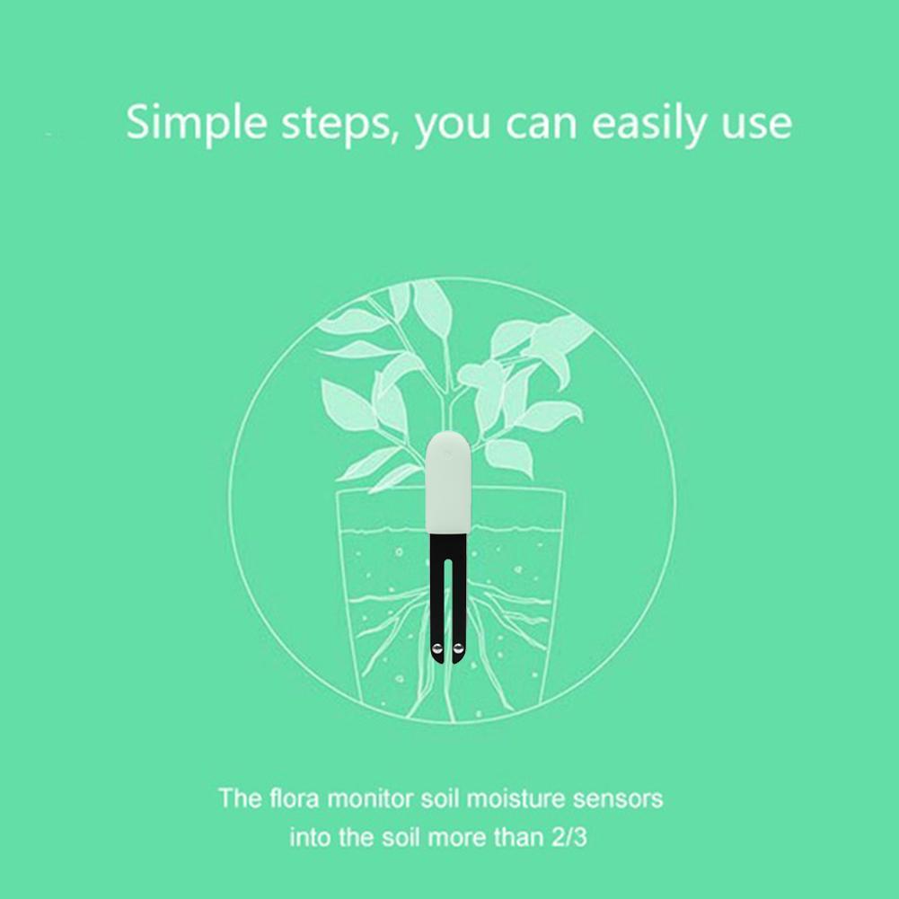 Xiaomi Mi Flora Plant Sensors