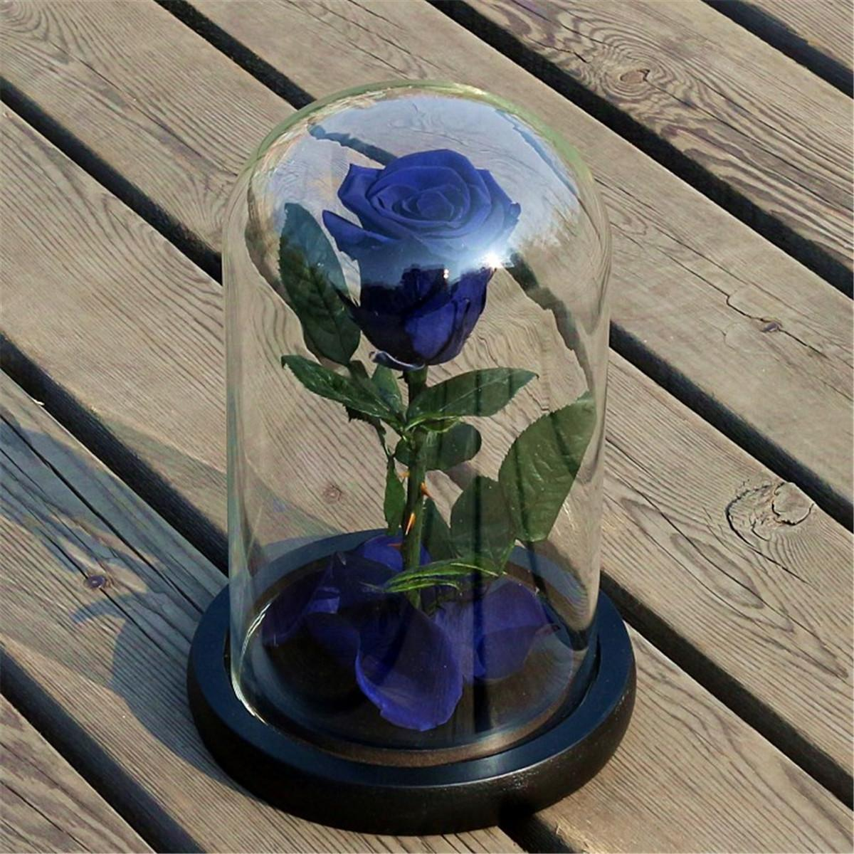(photo)Forever Rose Flower Festive Preserved Immortal Fresh Rose in Glass Unique Gifts # Blue