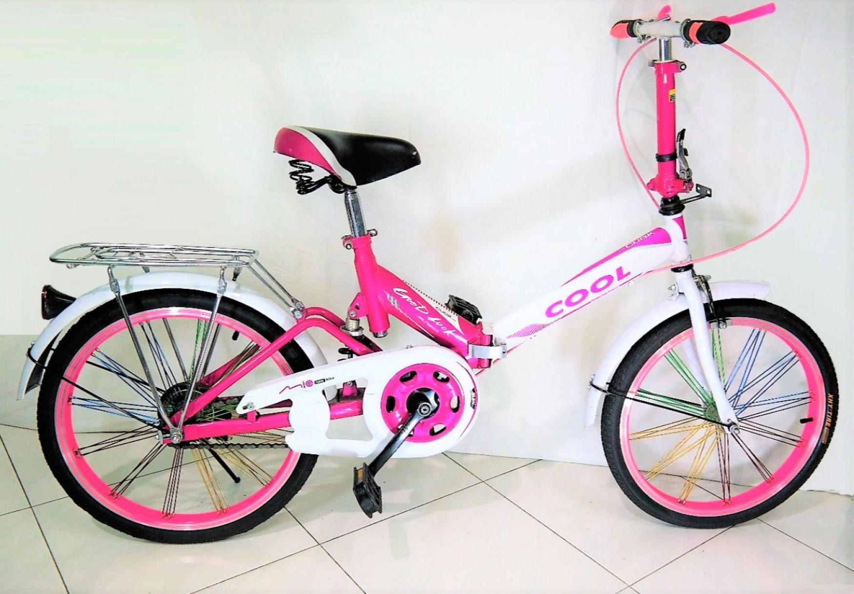 Europe BMS Branded Foldable Bicycle