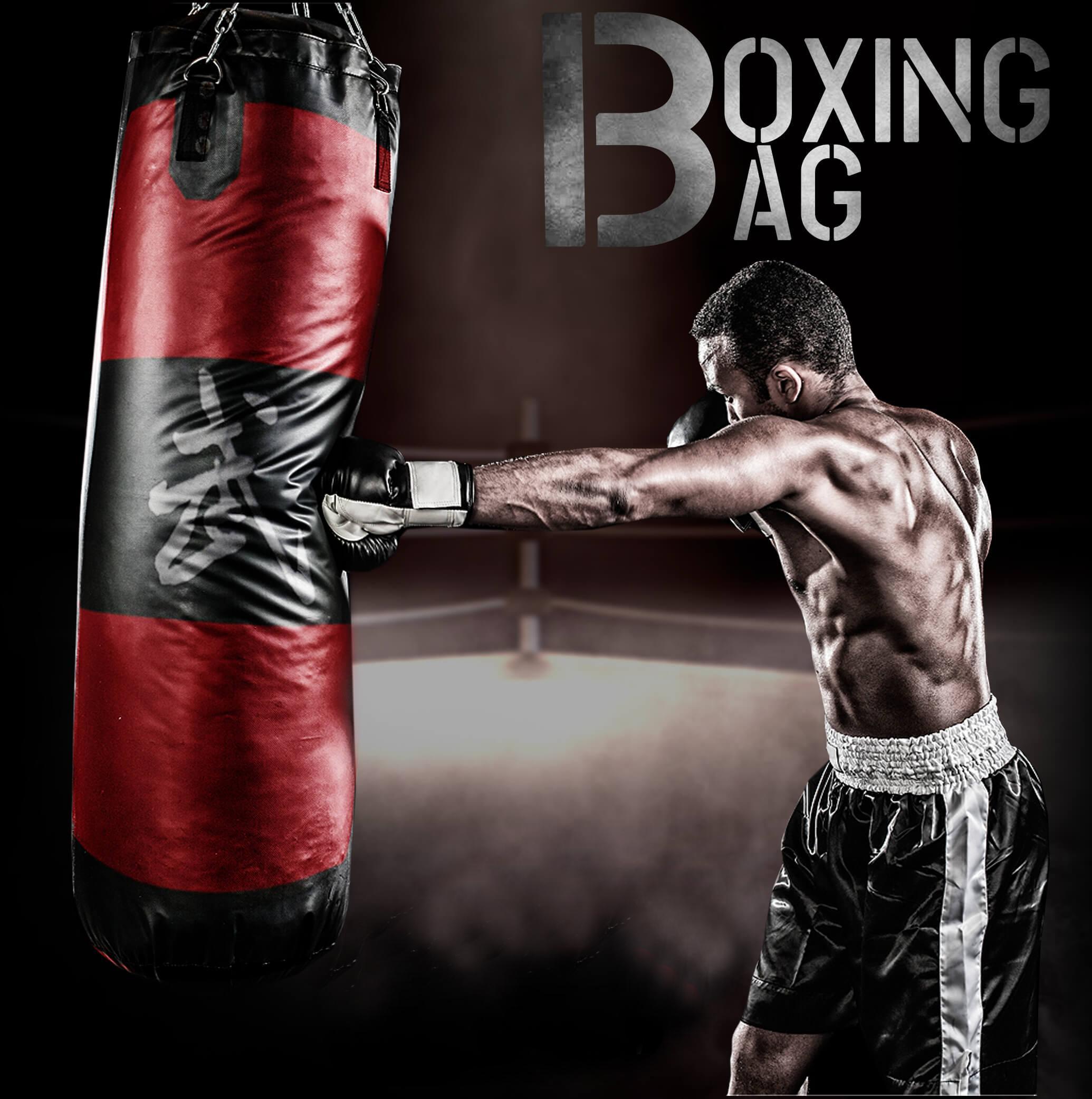 Punching Bag (SandBag)