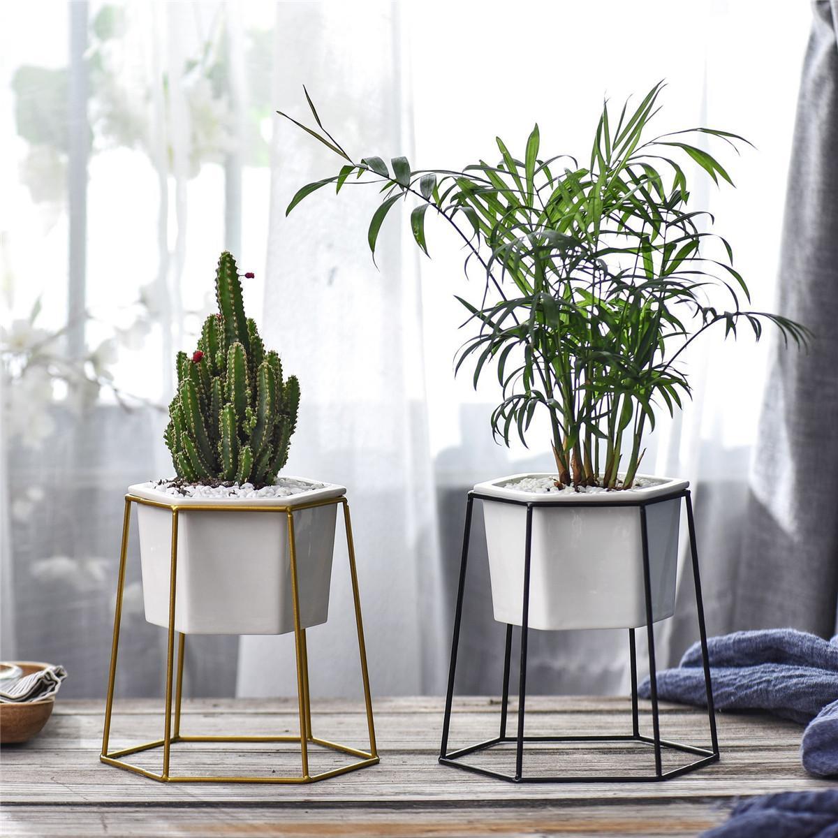 Hexagon Tools Diy Ceramic Plant Pot Metal Rack Holder Set Succulent Flower Planter Garden Buy Sell Online Best Prices In Srilanka Daraz Lk